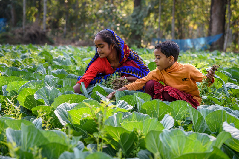 Better farm, better life for women in Bangladesh